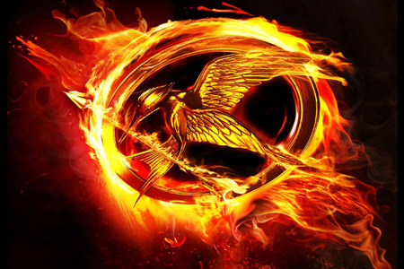 Do you love The Hunger Games trilogy?  If so…