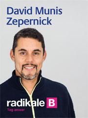 David Zepernick